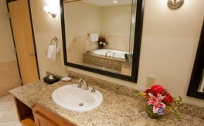 Executive King Jacuzzi Suite - Mirabeau Park Hotel & Convention Center - Spokane Valley, WA